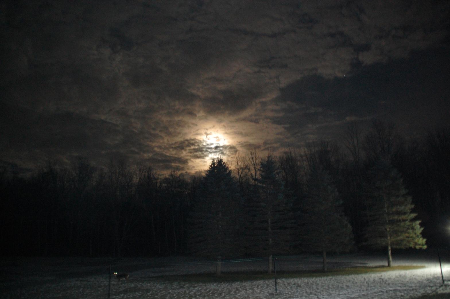 Winter full moon January 2017